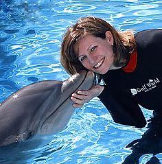 Nancy McAleer Vacation Rentals